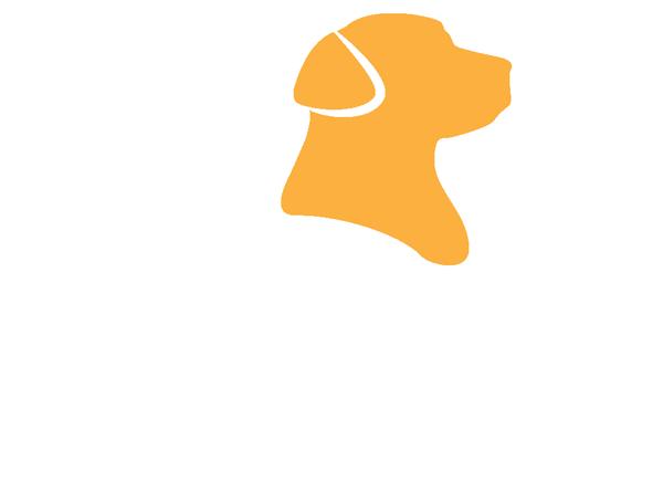 Midog Specialsök